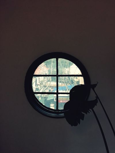 Window Indoors  No People Day Plant Interior Interior Views Light And Shadow Urban Lifestyle Old Architecture The City Light City Pattern Building Exterior IPhoneography Architecture Circular Window Silhouette Urban Geometry Vista Old Town Old House