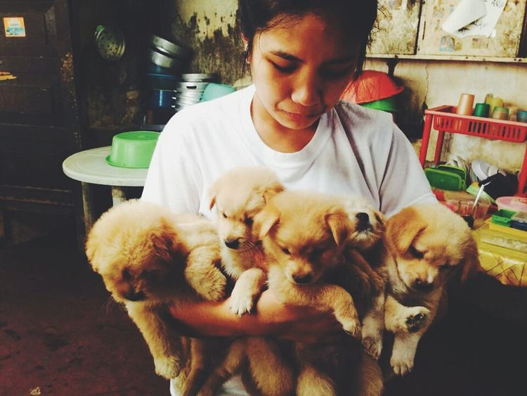 Make Magic Happen Tbt ❤ this was the day i was clingin on to my pups just like a baby while crying before giving them away to their new owners Puppies ✌