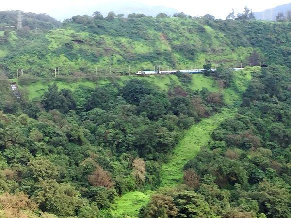 Mountainlove Trainportal Jungle & Mountain