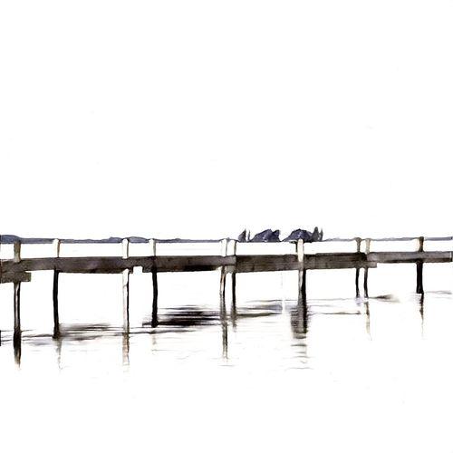 Steinhude Steinhude-am-meer.de - Dein Meer-Foto SteinhuderMeer Germany Black And White