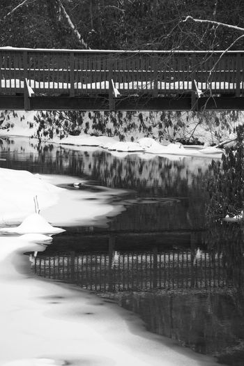 Reflection of person on bridge in swimming pool