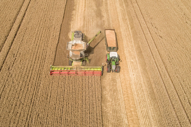 down on the farm, harvest time Aerial Shot Combine Harvester Drone  Drone Shot Farmland Tractor Wheat Field Aerial Photography Aerial View Agricultural Equipment Agricultural Machinery Agriculture Claas Claaslexion770 Combine Harvester Crops Farm Farming Field Harvest Harvest Time Machinery Rural Scene