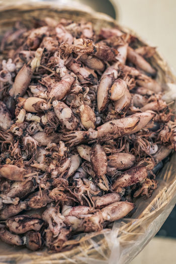 Dried Squid at