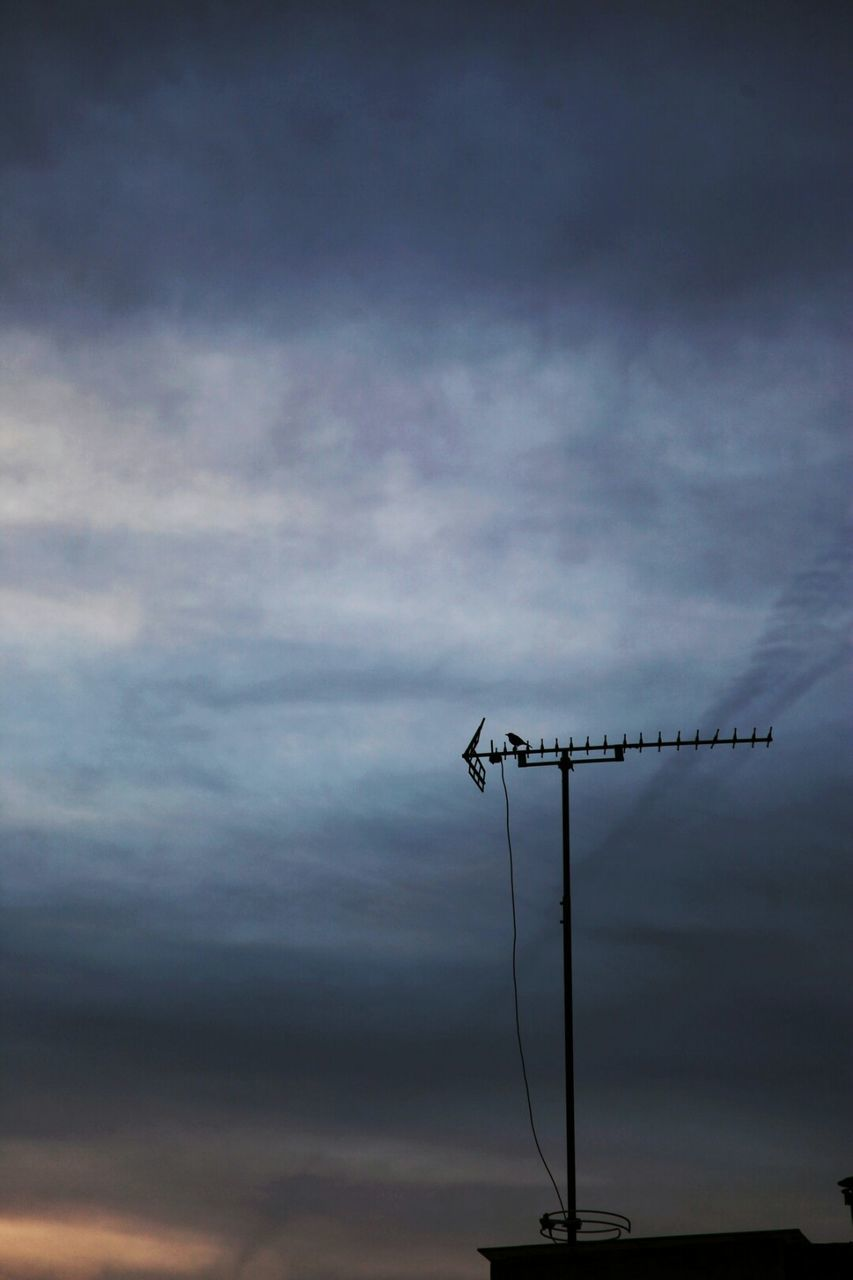 connection, technology, cloud - sky, animal themes, sky, low angle view, cable, one animal, no people, communication, animals in the wild, silhouette, outdoors, nature, bird, sunset, television aerial, day, perching