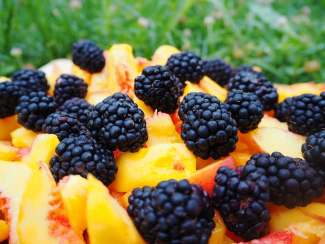 Grass Green Color Ready-to-eat EyeEmNewHere Lifestyle Home Large Group Of Fruits Slices Sliced Peach Peaches Berries Berry Fruit Freshness Blackberry - Fruit Blueberry Healthy Lifestyle Healthy Eating Fruits Food And Drink Food Fruit Blueberries The Week On EyeEm