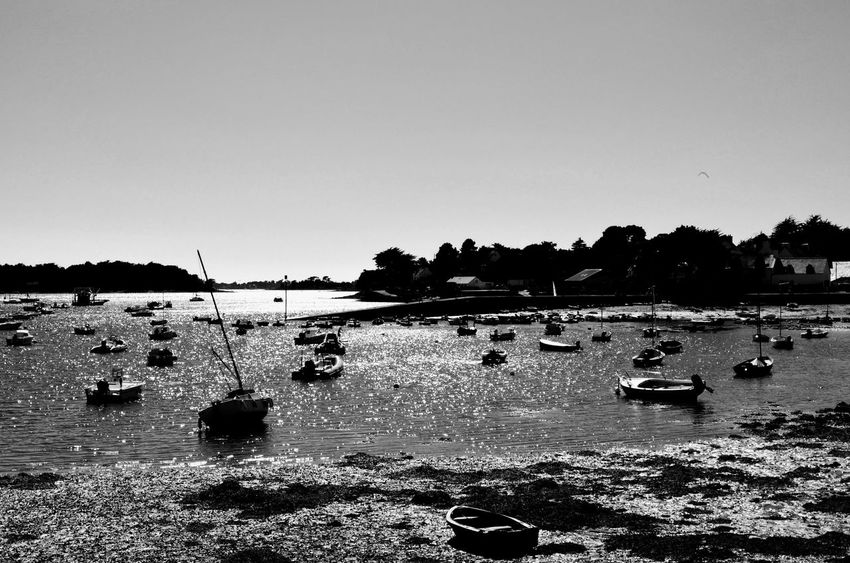 Scanaki Golfedumorbihan Golfe Du Morbihan Bretagne Silhouette Enjoying The View Blackandwhite Checkthisout Placetovisit France Nautical Vessel Beach Water Sea Silhouette Summer Outdoors Nature Tranquility Sky No People Day Beauty In Nature Scenics Horizon Over Water Perspectives On Nature Rethink Things Black And White Friday The Traveler - 2018 EyeEm Awards The Great Outdoors - 2018 EyeEm Awards The Creative - 2018 EyeEm Awards The Still Life Photographer - 2018 EyeEm Awards