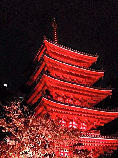 Temple Light Lightup JapaneseStyle Japanese Culture 五重塔 東長寺 博多 ライトアップ Japanese