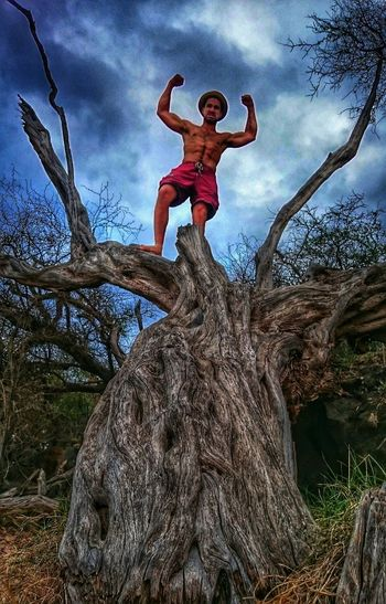 Me being king of the tree! 😬😬😬 Hdr_Collection