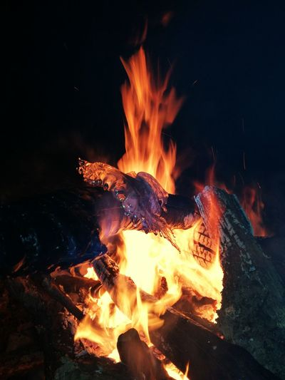 Flame Heat - Temperature Night Burning Outdoors Close-up No People Molten Nature Fire And Flames Ice Ice And Fire Fire And Ice Photography Fireplace Fire Pit Flame Tree Igniting Fire ! Flaming Firewood Fire In The Night Burning Fire Night Shot Burningwood Forest Life