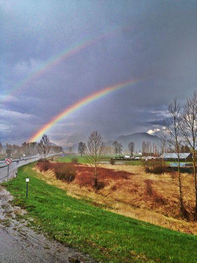 Enjoying Life Nature Hanging Out Rainbow