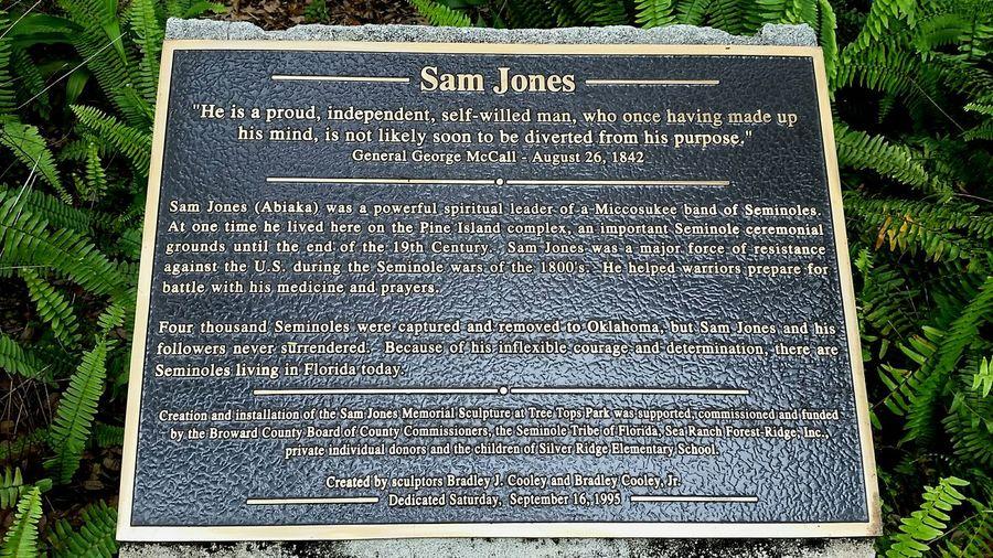 Sam Jones Miccosukee tribute Resistance  Freedom Fighters American History Miccosukee Florida History Pine Island Ridge Statue Seeking Freedom Fight For Freedom Text Western Script History Outdoors Communication