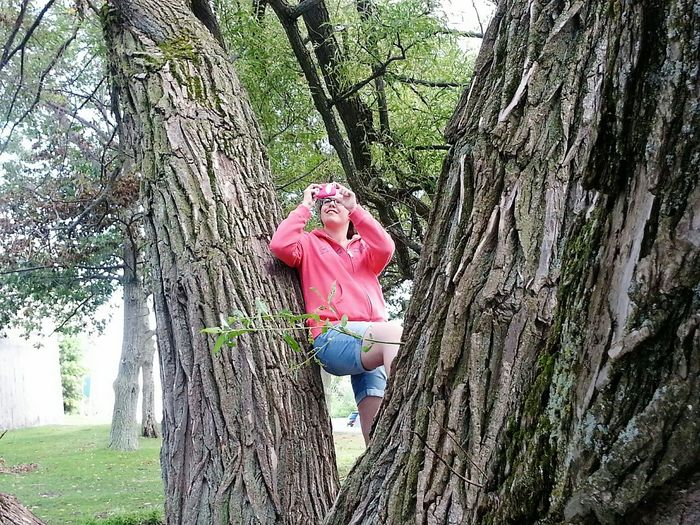 Climbing a tree... Portait Of A Friend The Portaitist - 2015 EyeEm Awards Nature On Your Doorstep Capturing Freedom Summer Views Learn & Shoot: Layering Protecting Where We Play What I Value Learn & Shoot: Single Light Source Deceptively Simple Natural Light Portrait Outaouais People And Places Enjoy The New Normal Uniqueness Miles Away Canada Coast To Coast Women Around The World Place Of Heart Breathing Space Be. Ready. Perspectives On People EyeEm Ready   An Eye For Travel Summer Exploratorium
