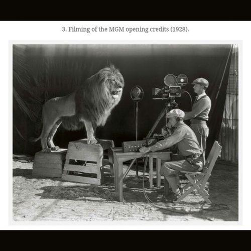 History Historicalpics MGM