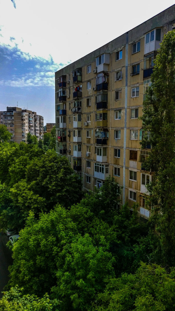 tree, architecture, growth, no people, window, building exterior, day, nature, outdoors, sky