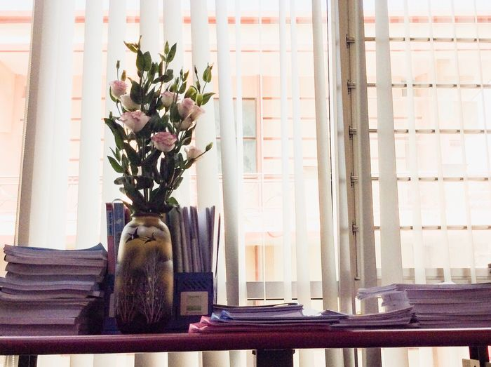 Flower Vase Indoors  Table Curtain Window Window Sill No People Home Interior Day Bouquet Close-up Flower Head Freshness