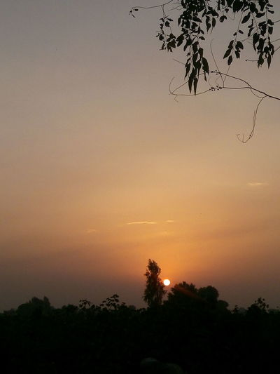 Which Time Is It? Can You Guess? Sunshine Or Sunset? Beautiful View ❤ Pleasant Rays Beauty In Nature Rural India Fields And Sky