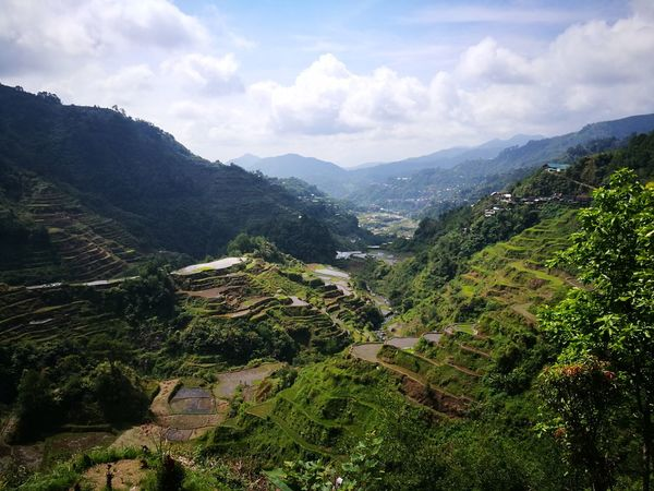 the mountains of Banaue Ifugao Tea Crop Tree Mountain Beauty Rural Scene Agriculture Sky Landscape Mountain Range Cloud - Sky Go Higher