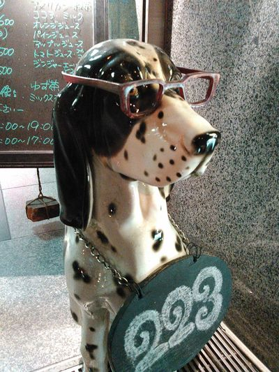 Night Photography Snapshot Dog He is sitting in front of a cafe. Wearing Glasses Dog Love Streetphotography Street Photography Funny Perro Perros Por El Mundo Animals Perros❤ Perros