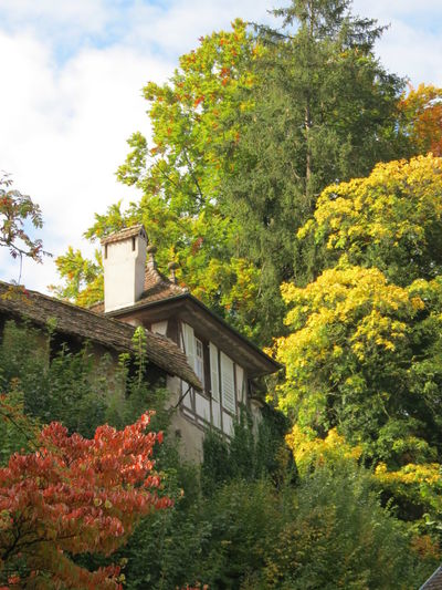 Cloud Heart In The Sky Photography September 2017 Small Old Cottage Architecture Autumn Autumn🍁🍁🍁 Beauty In Nature Building Exterior Built Structure Colorful Nature Day Flower Growth Large Trees Leaf Nature No People Outdoors Plant Sky Tree Yellow Green Red Leaves