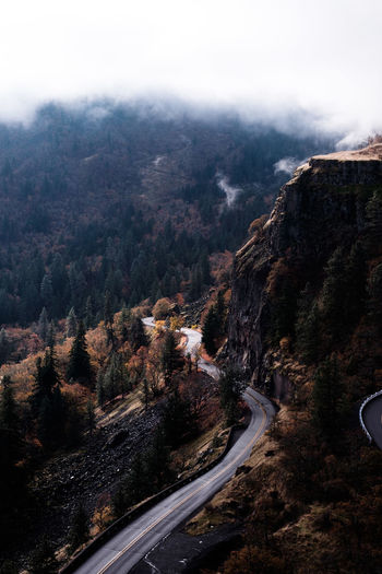 Rowena Landscape Nature Mountain Scenics Beauty In Nature No People Tree Aerial View Road Outdoors Mountain Range Forest Cold Temperature Winding Road The Week On EyeEm Rowena Crest Tranquility Autumn Fall Columbia River Gorge Perspectives On Nature