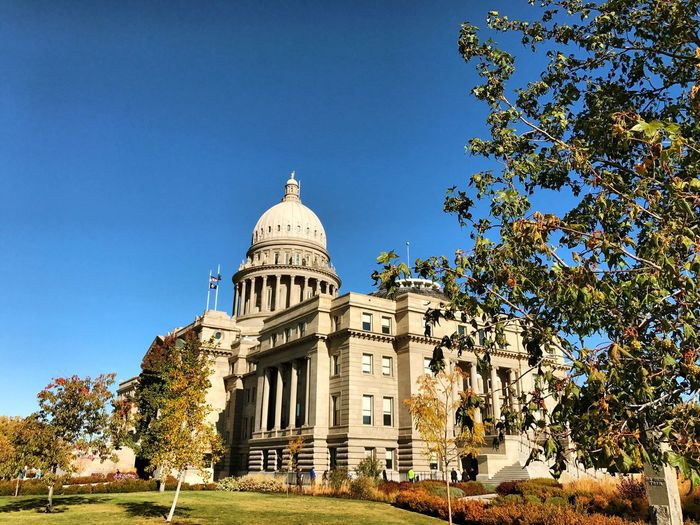 Architecture Built Structure Dome Building Exterior Clear Sky History Tree Day Blue Travel Destinations Low Angle View Outdoors No People Nature Sky Capitol Government Boise Trees Blue Sky Architecture Sandstone Idaho Capital Beauty In Nature
