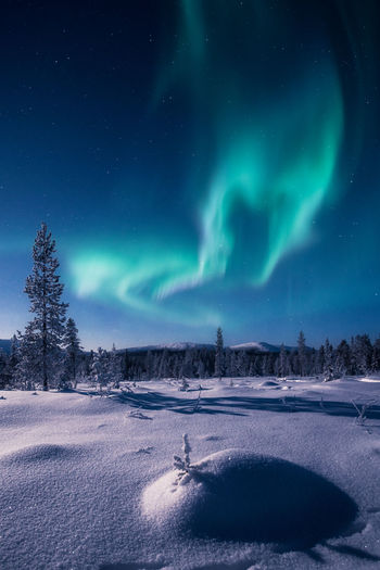 Aurora borealis over snow covered landscape at sunset
