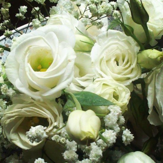 Так приятно когда без повода) работатакаяработа Weddingstuff Flowers Work rose white vsco vscocam vscolife vsconature vscotomsk vscorussia summer2014