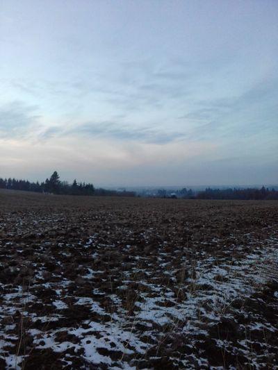 Winter Snow Cold Temperature Landscape Scenics Sky Beauty In Nature No People Rural Scene Frozen Fog Silence