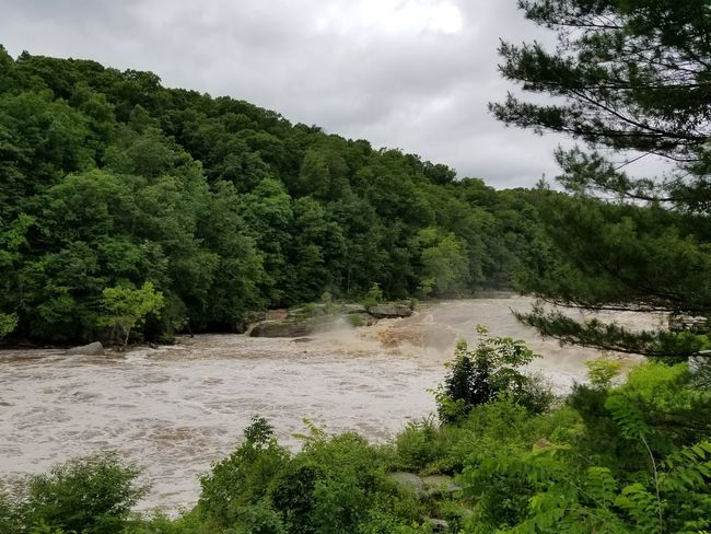Spraying Water Muddy Water Flooded River Water Outside Pennsylvania Ohiopyle Waterfall Rapids River Youghiogheny River Rough Water Tree Sky Landscape Cloud - Sky Green Color Pine Tree Pinaceae Storm Cloud Tree Area Lush - Description Evergreen Tree The Great Outdoors - 2018 EyeEm Awards