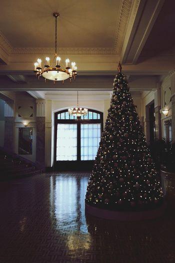 Traveling Travel Travel Photography Huaweimate10pro Illuminated Christmas Christmas Ornament Christmas Bauble christmas tree Christmas Lights