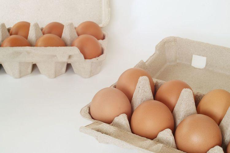 Egg Shell Raw