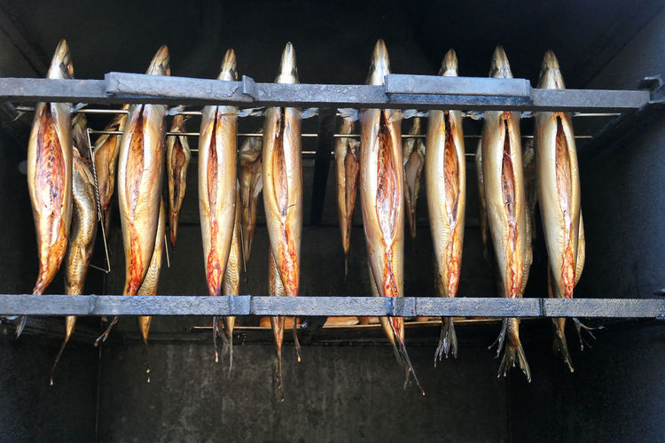 fresh smoked fish, Trout, in oven. smokehouse. Räucherfisch Smoke Smoked Smokehouse Barbecue Fish Food Food And Drink Freshness Grilled Heat - Temperature In A Row Metal Preparation  Preparing Food Seafood Side By Side Trout Vertebrate