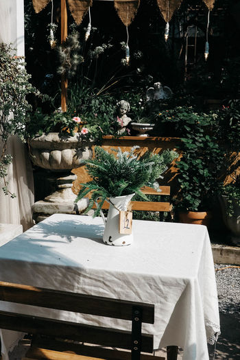 Backyard table Plant Nature Table No People Potted Plant Day Seat Outdoors Tablecloth Sunlight White Color Front Or Back Yard Chair Furniture Flower Pot Flower Arrangement