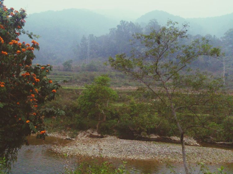 Taking Photos On The Road Viet Nam Nature_collection Travelling Hà Giang Landscape Tourist_spot Picture Scenery Shots
