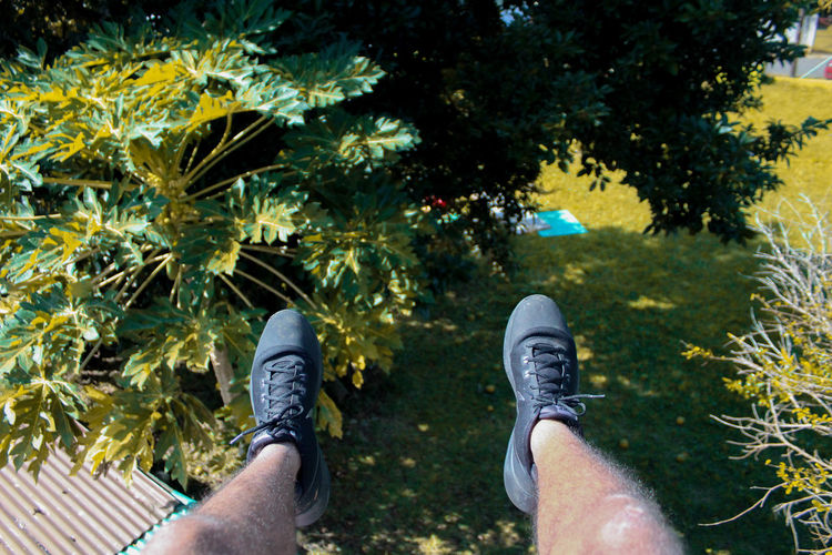 On the Roof. Adult Adults Only Close-up Day Hiking Human Body Part Human Leg Low Section Men Nature One Man Only One Person Only Men Outdoors People Personal Perspective Plant Real People Shoe Standing Tree