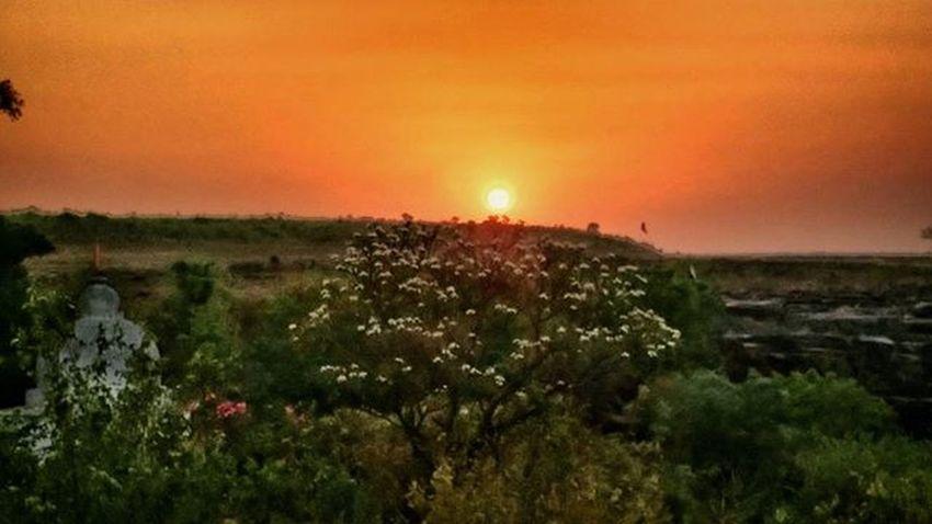 sunset 🌇...... At Chitradhara Motog Goodmorning Goodmorningpost Instadaily Instacool Sunset Sun Sky Clouds Tree Dusk Nature Nature_perfection Smartphone India Picoftheday Indian_photographers
