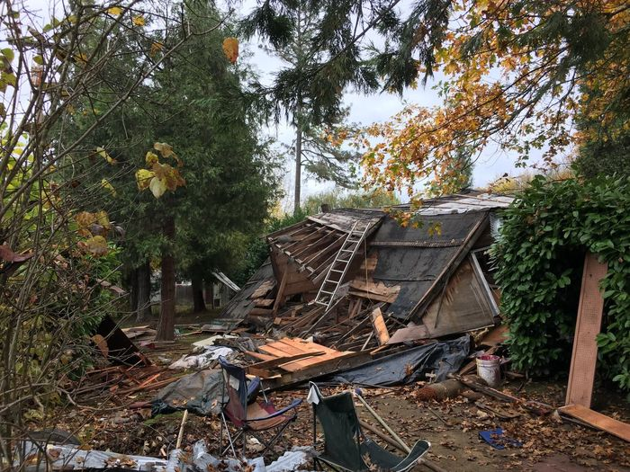 """Demolition"" Tree Damaged House No People Day Building Exterior Abandoned Autumn Built Structure Outdoors Rubble Leaf Architecture Sky"