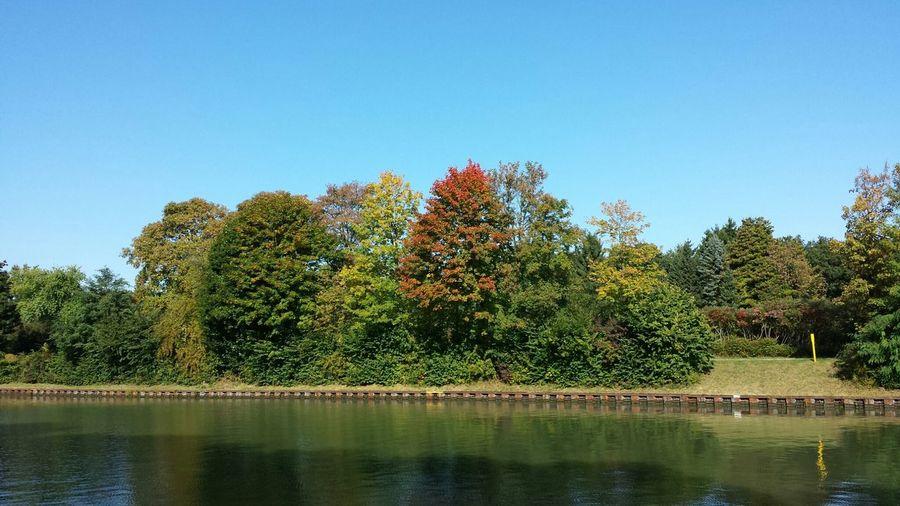 Herbst Relaxing