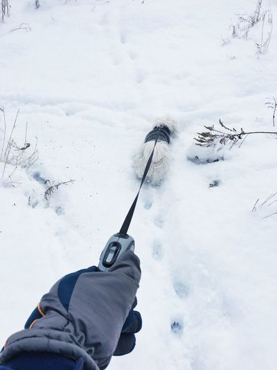 Cropped hand holding leash of dog on snow covered field