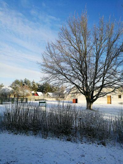 видизокна работа снег морозисолнцеденьчудесный First Eyeem Photo
