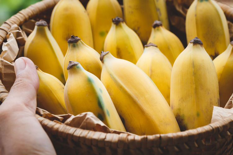 Ripe Bananas Art ASIA Bamboo Banana Basket Food Food And Drink Fresh Fruit Healthy Eating Nutrition Old Wood Paper Raw Ripe Sunlight Sweet Tasty Tropical Vietnam Vitamin Yellow