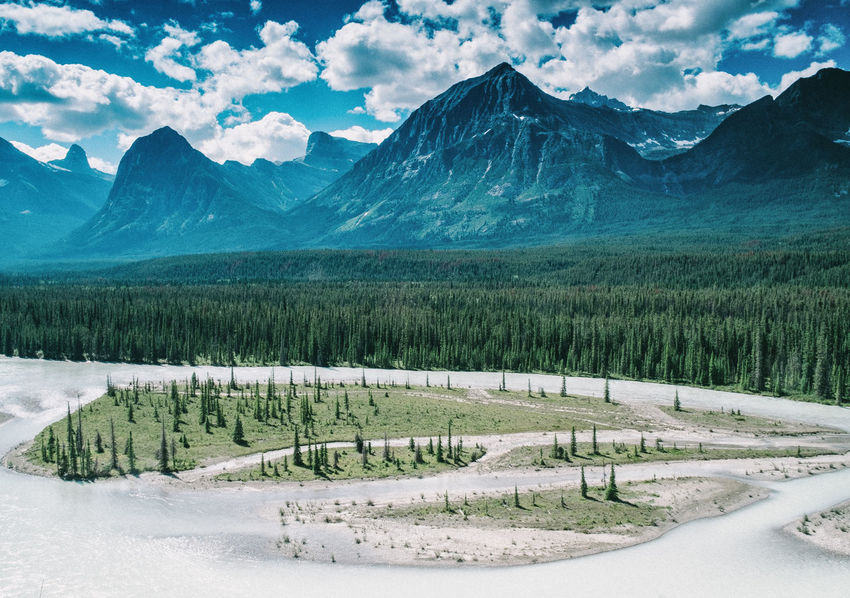 EyeEm Nature Lover Hills IceField Icefields Parkway Rocky Beauty In Nature Canada Cloud - Sky Cold Temperature Day Glacier Glaciers Icefields Landscape Mountain Mountain Range Nature No People Outdoors Road Rocky Mountains Scenics Sea Sky Snow Tranquil Scene Tree Winter
