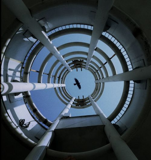10 Spiral Staircase Politics And Government City Concentric Circle Architecture Built Structure Staircase Stairway Steps And Staircases Directly Below Stairs Spiral Fire Escape Emergency Exit Spiral Stairs Railing Skylight Coiled Spring Escalator Tendril Bannister Hand Rail Steps Cupola Cupola Geometric Shape Footbridge Spiral Galaxy