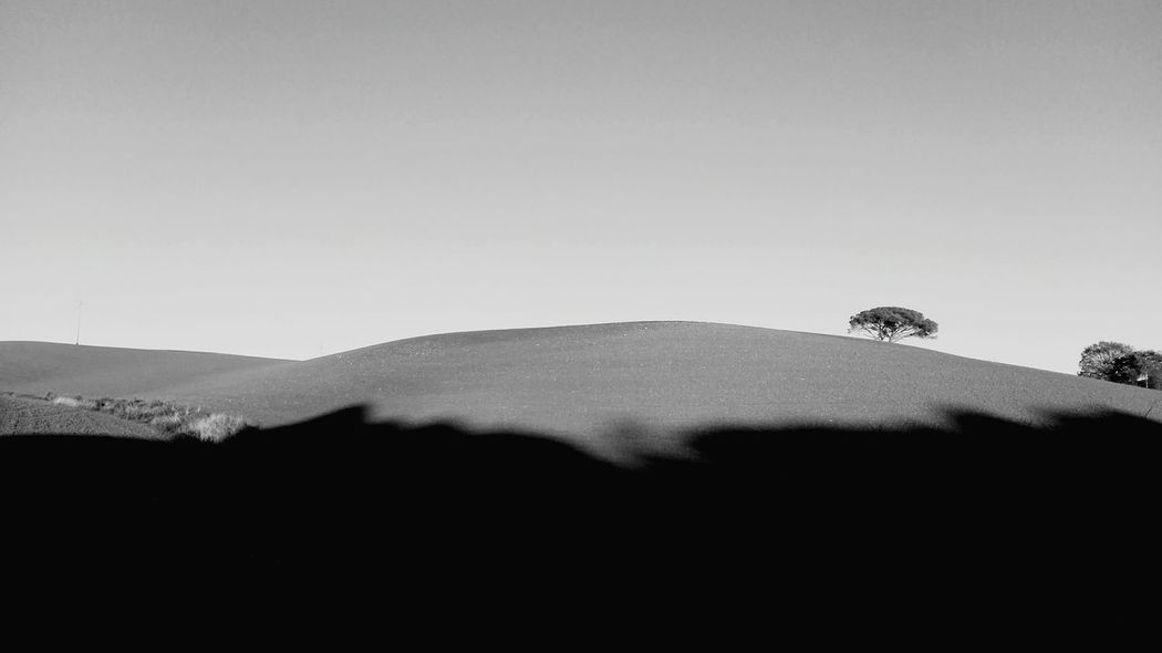 Landscape Nature No People Hill Scenics Outdoors Day Beauty In Nature Shadow Rural Scene Clear Sky Sky Desert Sand Dune Grass Tree Black And White Friday Eyeemmarket Blackandwhite Photography Tuscany View Typical Tuscan View