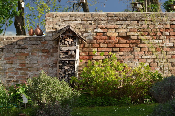 Garden at sunset in Austria Architecture Brick Wall Building Exterior Built Structure Day Garden Garden Architecture Garden Love Garden Photography Gardening Gardens Low Angle View Nature No People Nützlingshaus Outdoors Sun Low In The Sky