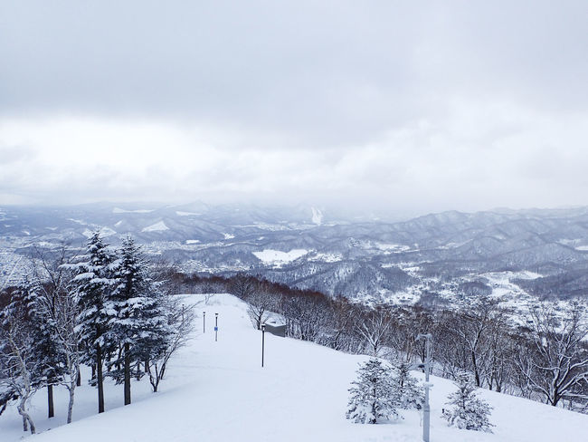 View from Mount Moiwa, Sapporo-shi Japan ASIA Hokkaido,Japan Holiday Japan Vacations Background Cold Temperature Day Mount Moiwa Nature Outdoors Snow, Wallpaper Winter