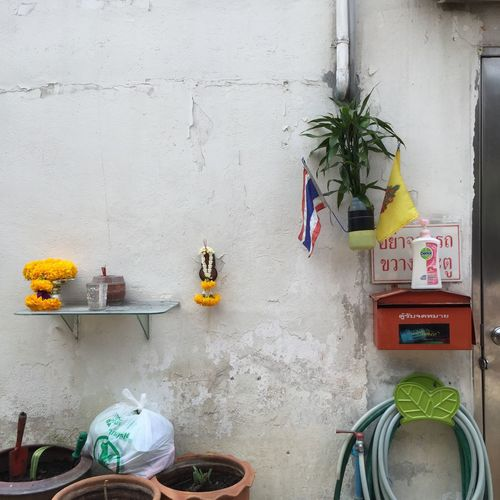 Architecture Bicycle Building Exterior Built Structure Day Flower Pot Growth House Land Vehicle No People Parked Parking Plant Potted Plant Stationary Transportation Variation Wall Wall - Building Feature Yellow