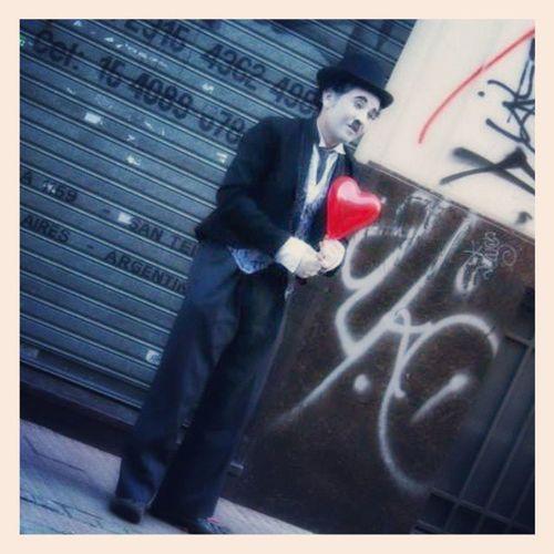 Mr Chaplin Buenosaires Cute Insta4gram Stunning_shots