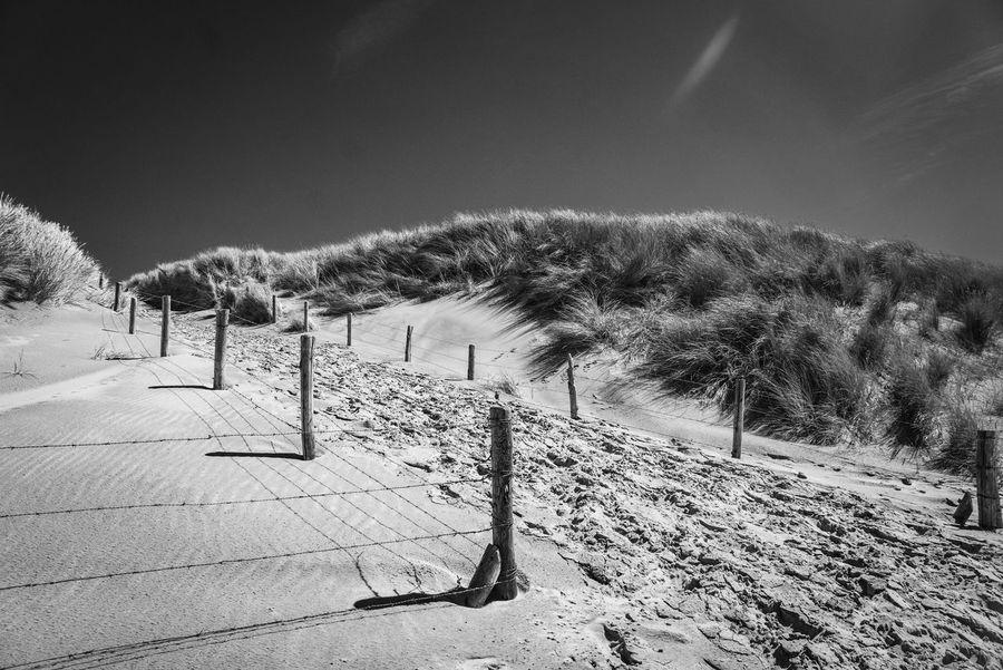 Genießen You And Me Hand In Hand Seite An Seite Mit Dir An Meiner Seite! Beach Sand Sand Dune Nature Blackandwhite Beauty In Nature Scenery Travel Dunes Sky Landscape Tranquility Tranquil Scene Idyllic Calm Scenics