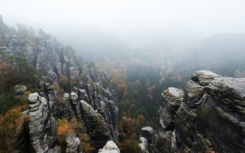 EyeEmNewHere Beauty In Nature Day Fog Mountain Nature No People Outdoors Scenics Tranquil Scene Tranquility Tree